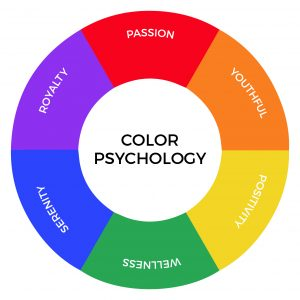 Which Colors Should You Choose For Your Website?